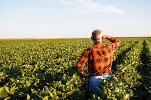 Plataforma do Cadastro Ambiental Rural agilizará análise de dados das propriedades rurais